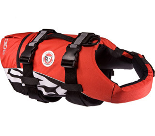 Featured Runner Up Dog Life Jacket