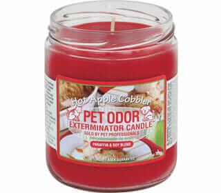 Featured Best Odor Removing Candle