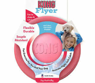 Featured Best Frisbee For Puppies
