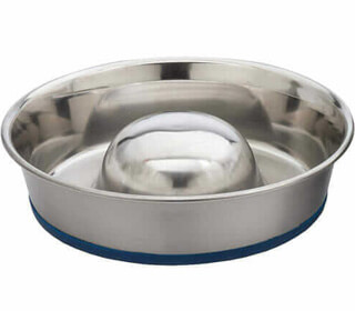 Featured Best Slow Feeder For Large Dogs