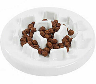 Petacc Ceramic Slow Feeder