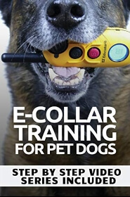 E-Collar Training For Pet Dogs Book Cover