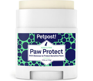Petpost Paw Protection