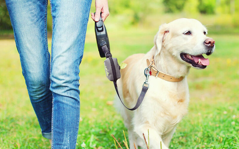 Best Dog Poop Bag Holder/Dispenser