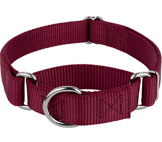 Featured Most Affordable Martingale Collar