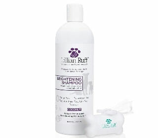 Featured Best Whitening Dog Shampoo