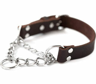 Featured Best Leather Martingale