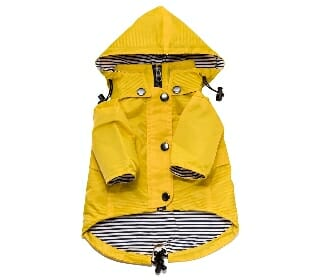Featured Most Fashionable Dog Raincoat